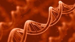 genetics-640x360